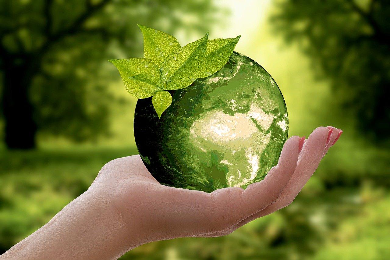 Wirtschaft neu denken – nachhaltig leben und arbeiten!